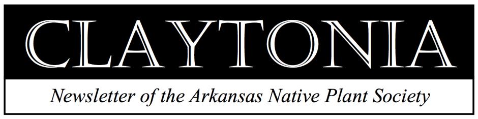 Claytonia Header Image