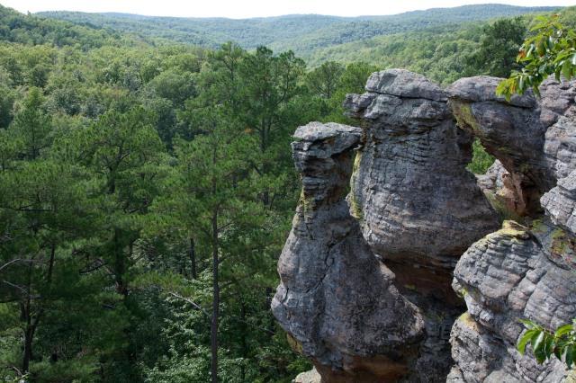 Pedestal Bluff Scenic Area